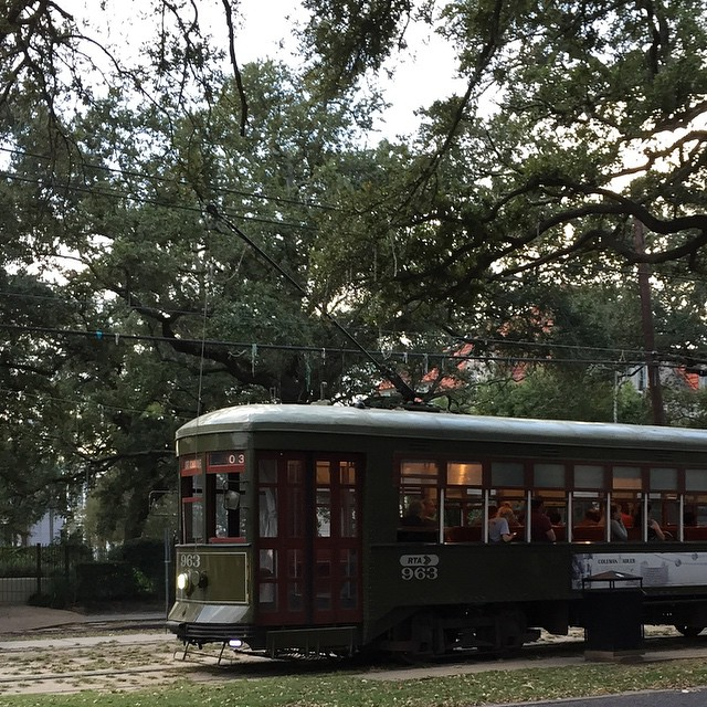 Beads in the trees. My shirt is off! New Orleans! #nola #streetcar #beads